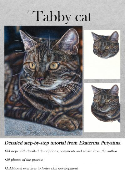 Colored pencils tutorial Tabby Cat